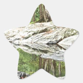 Reflekterande bassäng - Landscape.jpg Stjärnformat Klistermärke