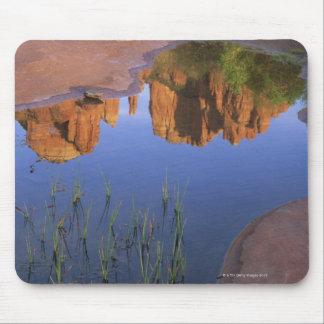 Reflexion av domkyrkasten, Sedona, Arizona Musmatta
