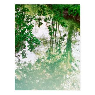 Reflexion av träd vykort