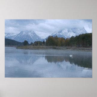 Reflexion för Mt. Moran Poster