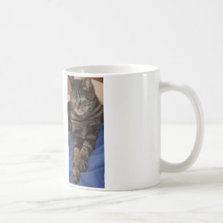 Regal Dave Kaffemugg