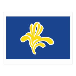 Region av den Bryssel flagga Vykort