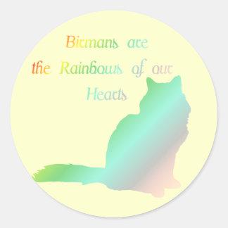 Regnbåge Birman Runt Klistermärke