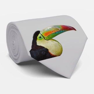 Regnbåge-Fakturerade Tou kan göra det tien (tända Slips