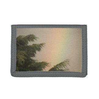 Regnbåge och trädplånbok