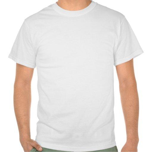 Regnbågeflaggamanar T-tröja (bekläda designen),
