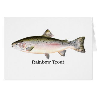 Regnbågeforellfisk Hälsningskort