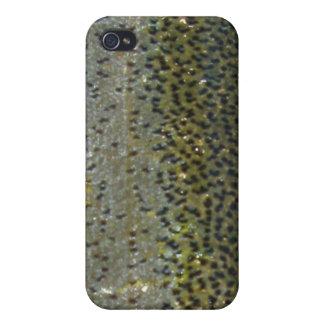 Regnbågeforelliphone case iPhone 4 skal