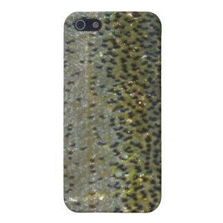 Regnbågeforelliphone case iPhone 5 skydd