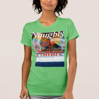 Regnbågen färgar kvinna den Hanes ComfortSoft® T Shirts