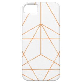 Ren geometri 01 iPhone 5 cover