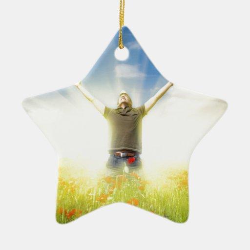 ren glädje julgransdekorationer