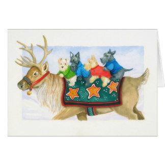 Ren och Terriers Hälsningskort