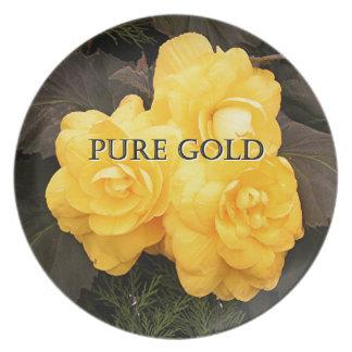 Rent guld: gul begoniablomma tallrik