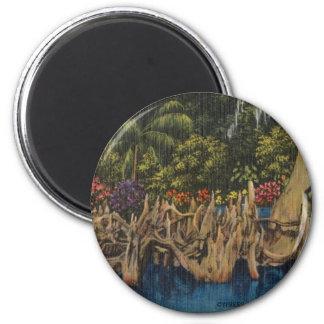 Retro Florida Cypress för vintage trädgårdar Magnet