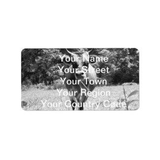 Retro grå färgtjurfoto adressetikett