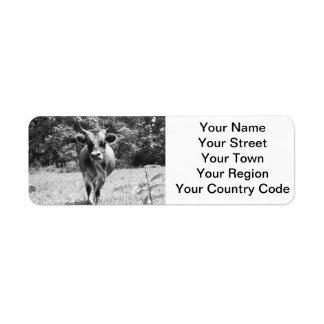 Retro grå färgtjurfoto returadress etikett