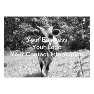 Retro grå färgtjurfoto set av breda visitkort