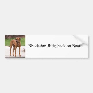 Rhodesian Ridgeback ombord beställnings- bildekal
