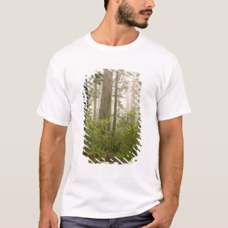 Rhododendron som blommar bland t shirts