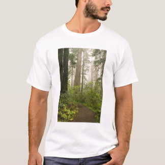 Rhododendron som blommar bland tee