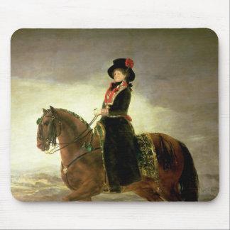 Rid- porträtt av drottningen Maria Luisa Musmatta