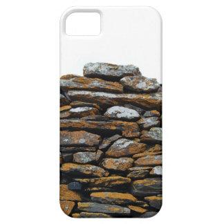 Riden ut stenvägg iPhone 5 hud