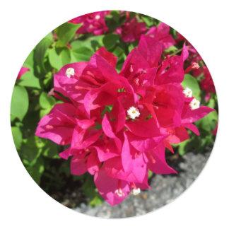 Rik röd Bougainvillea Fyrkantigt 13,3 Cm Inbjudningskort