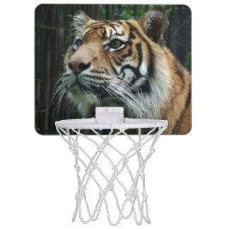Ring för basket för Sumatran tiger mini- Mini-Basketkorg