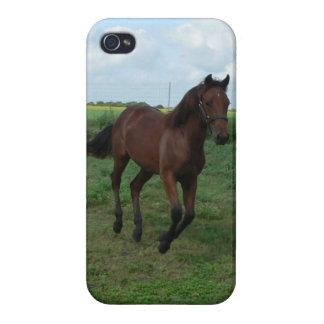 Rinnande häst iPhone 4 hud