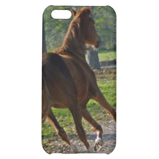 Rinnande häst iPhone 5C skal