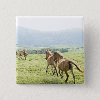 Rinnande hästar standard kanpp fyrkantig 5.1 cm