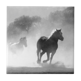 Rinnande svartvitt härligt landskap för hästar kakelplatta