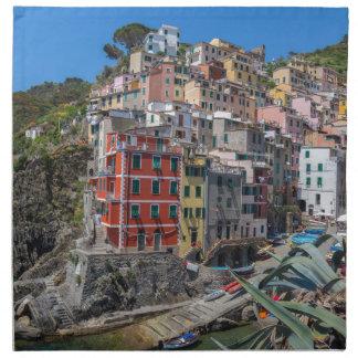 Riomaggiore Cinque Terre Liguria italien Tygservett
