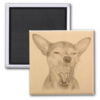 Riskera gäspningen för valpen för Chihuahuamagnet~ Magnet