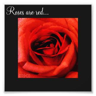 Ro är röda… fototryck