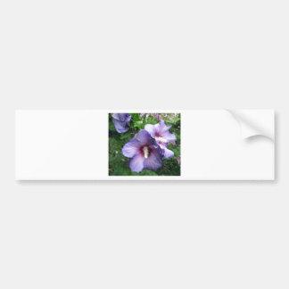 Ro av blått för Sharron hibiskuslilor Bildekal
