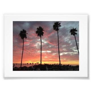 Ro av palmträd under solnedgång fotograferar fototryck