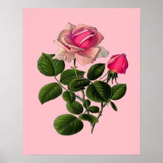 Ro för rosa Tea Poster