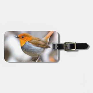 Robin fågeldesigner bagagebricka