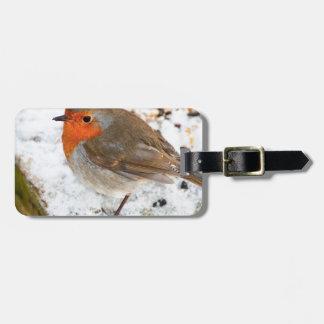 Robin på ett snöig loggar bagagebricka