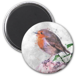 Robin Redbreast Magnet Rund 5.7 Cm