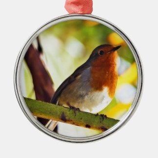 Robin röd bröstfågel julgransprydnad metall