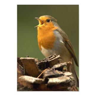 Robin sjungande inbjudan