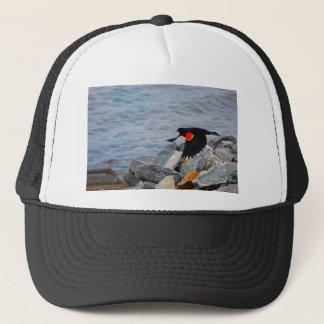 Röd bevingad Blackbird - hatt Keps