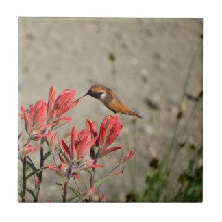 Röd blommafågel kakelplatta