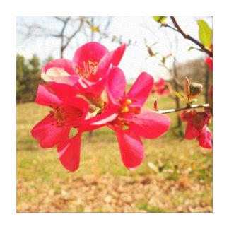 Röd blommakanfas canvastryck