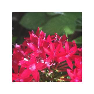 Röd blommigt canvastryck