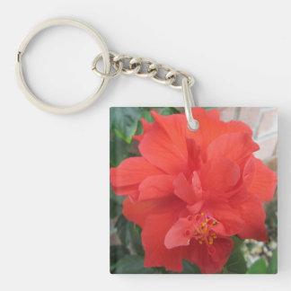 Röd blommigt för hibiskusväxt