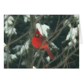 Röd fågel i snön hälsningskort